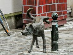 Pissing dog in Brussels (native city of pissing boy fountain), Belgium