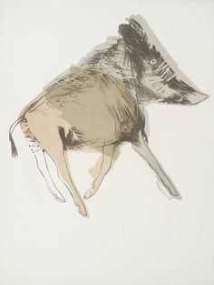 Dame Elisabeth Frink 'Wild Boar', 1967 Lithograph on paper 780 x 594 mm © Frink Estate Wild Boar, Illustrations And Posters, Gravure, Animal Paintings, Painting & Drawing, Moth Drawing, Art Inspo, Collages, Printmaking