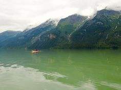 Kayaking  and  grizzly observation ⭐️⭐️⭐️⭐️⭐️Chilkoot  Lake Haines Alaska PleinAirEnVR