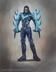 Night Wing Design from Injustice: Gods Among Us