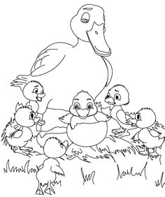 Free printable duck coloring pages for kids, coloring duck