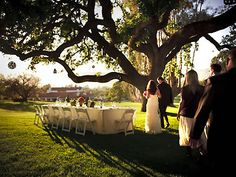 Ojai Valley Inn and Spa Ventura Weddings Southern California Reception Venues 93023- I want the trees!