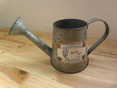 Vintage Style Galvanized Watering CAN