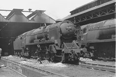SR West Country Pacific No 34042 Dorchester at Bournemouth Shed 3 June 1962 Photo FG Steinle Southern Trains, Steam Trains Uk, Bullen, British Rail, Bournemouth, Steam Engine, Steam Locomotive, Sheds, Brighton