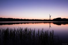 When the sun goes down at the lake ...   More here: http://www.phothomas.de/nachtfotografie-und-sternfotografie-in-oldenburg-2016/   Follow me on Instagram: https://www.instagram.com/phothomas.de/   #sundown #lowersaxony #bornhorst #sky #purple #silence #lake #sonnenuntergang #niedersachsen #goodmood #natur #beauty #skylovers #photography #canon #canoneos5dmark3 #mothernature #phothomas #photographer #oldenburg #rastede #bremen #fotograf #thomasweber #germany #photooftheday #picoftheday…