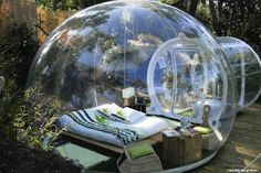 Transparent pods let you sleep while you're under the stars. Imagine if it was raining!