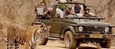#Golden_triangle_tour_with_Ranthambore visit famous #Ranthambore_National_Park and Jungle safari with expert tour guide.