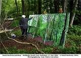 Image detail for -david-hockney-winter-tunnel-with-snow-march-2006.jpg