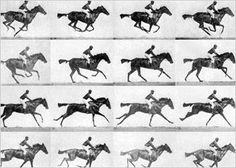7 Incredible Things You Didn't Know About Eadweard Muybridge