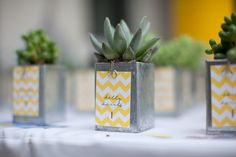 Mariage style mexicain // Mexican style wedding > Idees cadeaux invites : des mini cactus #mariage #wedding