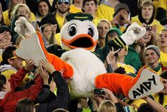 He Has an Appreciation for Disney | 15 Reasons Why The University Of Oregon Duck Is The Best Mascot Around