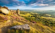 Heather moorland at Curbar Edge, in the Peak District national park. Photograph: Alamy