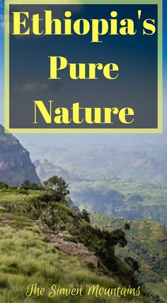 Top 100 travel adventure! Ethiopia's pure nature, Discover the Simien Mountains. With its jaw dropping views of wild landscapes andwild flowers toits rare wildlife containing Gelada Baboons, Wallia Ibex and Ethiopian  Wolves, the Simien Mountains is a rarely visited wonderland of nature. Click to read more