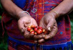 What Fair Trade Actually Means—and 4 Products You Can Feel Good About Buying