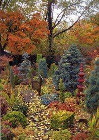 Lower garden mid November