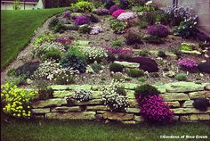landscaping for a backyard with a slope - Bing Images
