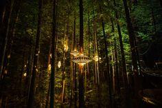 Designer David Trubridge and Redwoods Treewalk Rotorua have created Redwoods Nightlights - New Zealand's first design-led tourism experience. Instalation Art, Journal Du Design, Redwood Forest, David, Nightlights, Tree Lighting, Pendant Lighting, Chandelier, Travel Tours