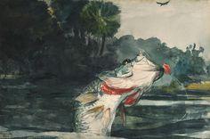 Black Bass, 1904