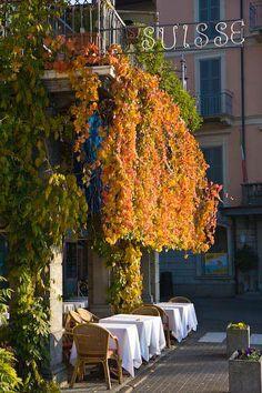 Suisse Hotel and Restaurant in Bellagio Pictures of Bellagio, Italy