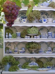 blue and white dishes with green hydrangeas...