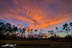 Amazing clouds during sunset over the Palm Beach Gardens wetlands in Palm Beach County, Florida.