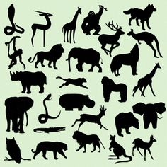 Safari Jungle Animal Silhouettes Clip Art-INSTANT DOWNLOAD -27 Individual Png Files -Personal or Commercial Use - 300 DPI Embellishment via Etsy