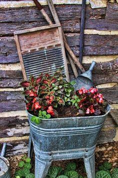 old metal wash tub filled with plants...old scrub board....love it...
