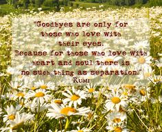 "Rumi - ""Goodbyes are only for those who love with their eyes. Because for those who love with heart and soul there is no such thing as separation."""