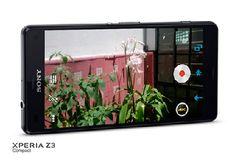 Sony Phone, New Mobile, Phones