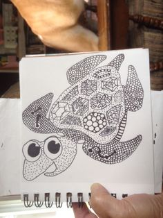 Traced the turtle but tangled the rest