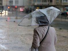 Para acalmar a seca extrema que afeta o país é preciso bem mais do que as chuvas que caem por estes dias. Podem seguir-se enxurradas e secas mais longas, avisam os cientistas http://expresso.sapo.pt/sociedade/2017-11-25-Vai-continuar-a-chover--Muito-ou-pouco-