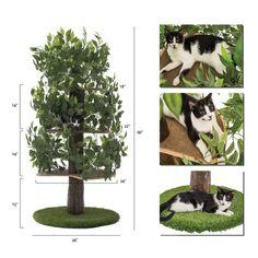 Outdoor Cat Cage, Outdoor Cat Enclosure, Outdoor Cats, Cat Cages Indoor, Cat Tree House, Cat Tree Condo, Cat Condo, Ugly Cat, Cat Activity