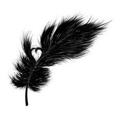 heart in feather
