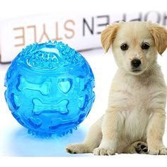 Jocestyle Funny Pets Dog Cat Ball Chew Soft Sound Play Fetch Training Teeth Toy(Blue) *** You can find more details by visiting the image link. (This is an affiliate link) #Dogs