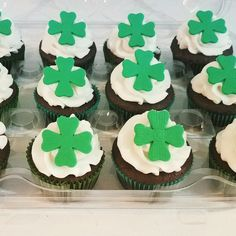 St. Patrick's day cupcakes.  Mint chocolate chip