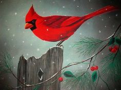 Bird Print  Winter Cardinal by SmallTownTraditions on Etsy, $25.00