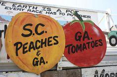 georgia peach by ginnybranch, via Flickr