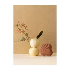 "@losobjetosdecorativos님: ""Terracota Seashell box on set. . . . #losobjetosdecorativos #design #objects #decor #barcelona…"""