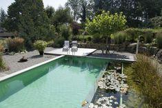 Piscine naturelle dans un jardin de charme© Living-Pool de BIOTOP - www.baignade-ecologique.com