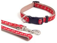 Puppy Collars and Leads :: Beige Bone -