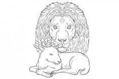 Lion Watching Over Sleeping Lamb - Illustrations. Drawing sketch style illustration of a lion head watching over a sleeping lamb viewed from front set on isolated white background. Lamb Drawing, Blazer Shirt, Drawing Sketches, Drawings, Otters, Lion, Sleep, Artwork, Retro Illustrations