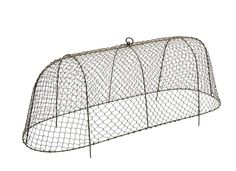 Buy Long rabbit proof cloche: Delivery by Waitrose Garden in association with Crocus