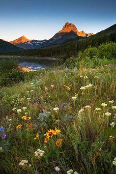 Montana   Jason Savage Photography