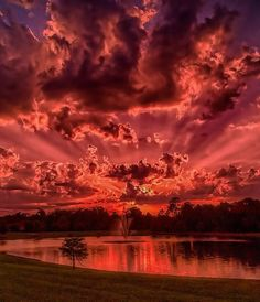 Red Sunset, Florida Photography By: Lutfi Shedraway Red Sunset, Big Photo, Perfect World, Beautiful Images, Beautiful Sites, Beautiful Scenery, Beautiful Landscapes, Clouds, Sunsets