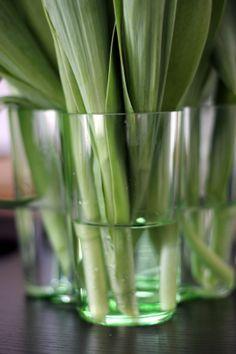 Aalto vase by Iittala.
