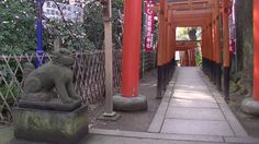 #japan#japon#temple#torii#komainu#ueno#travel