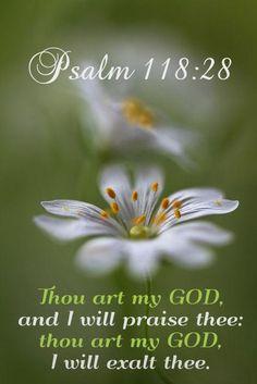 Psalm 118:28 KJV