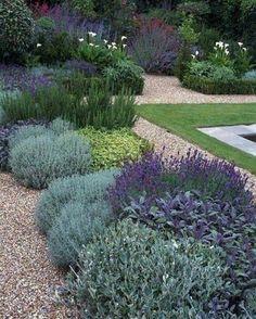 100+ Gardening & Garden Plants Ideas
