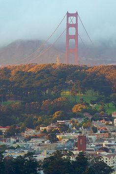The sun peeked below the stormclouds to illuminate the Golden Gate via Tumblr