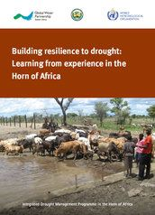 Building resilience to drought: Learning from experience in the Horn of Africa